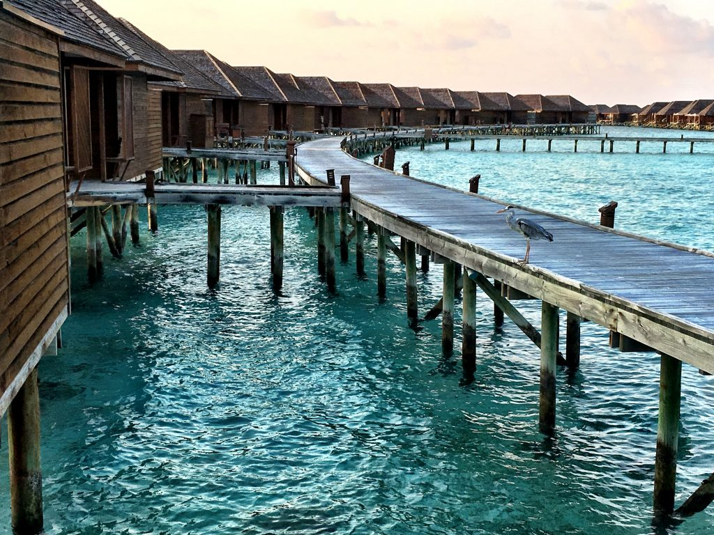 Maldives - Veligandu Island Overwater Bungalows