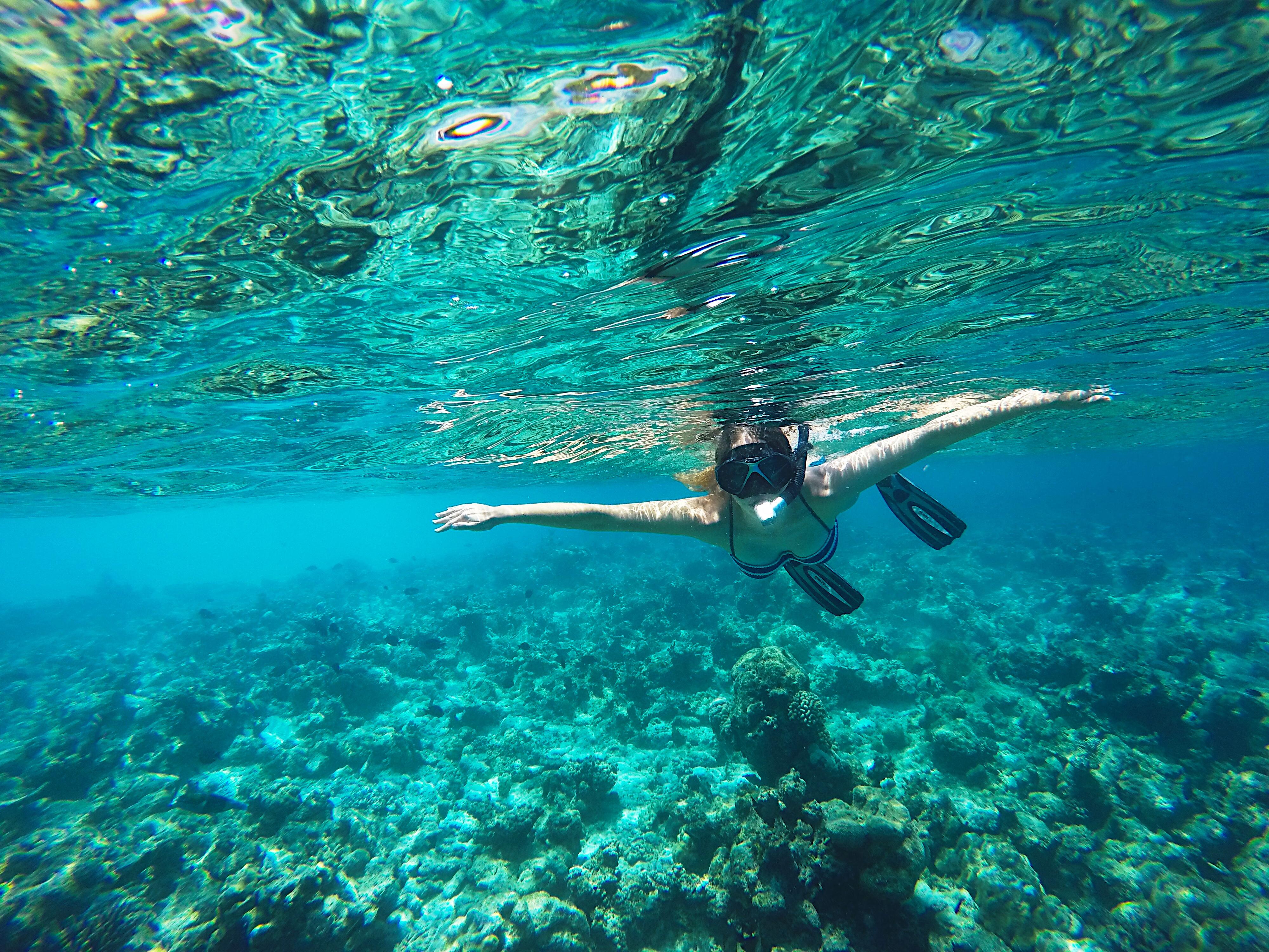 Maldives-Veligandu-Island-Kristy-Snorkeling