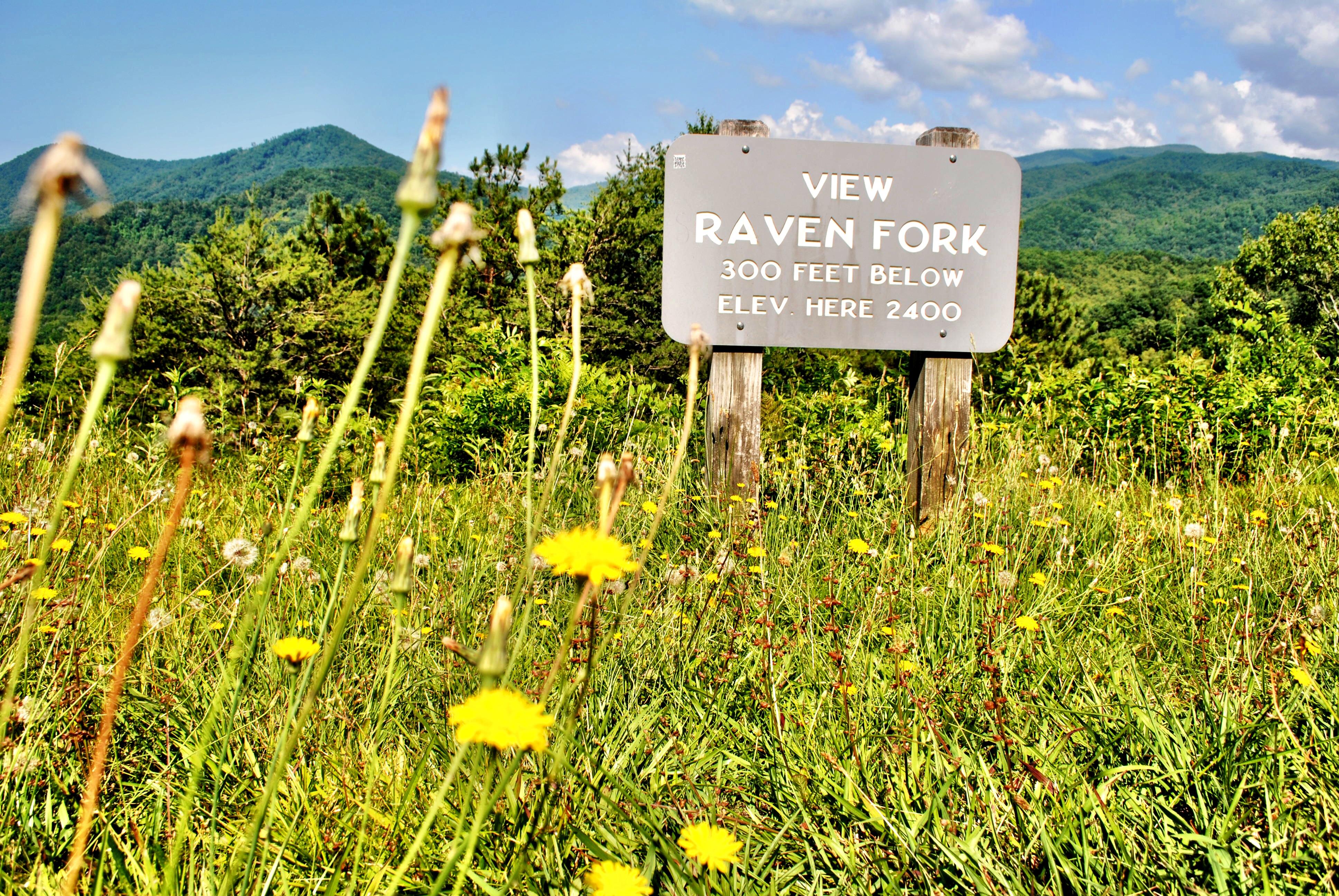 Raven Fork View in North Carolina
