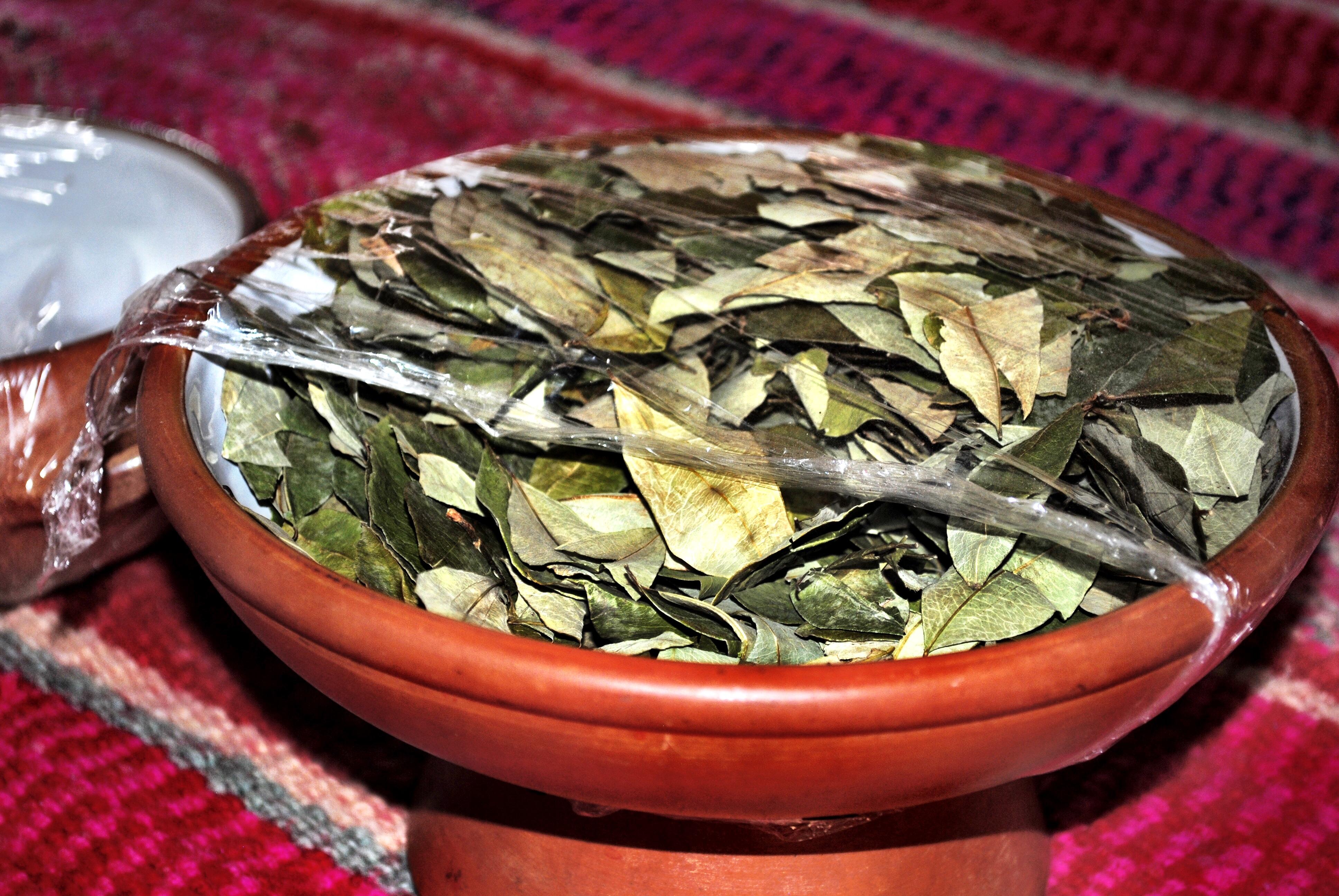 Peru - Coca Leaves