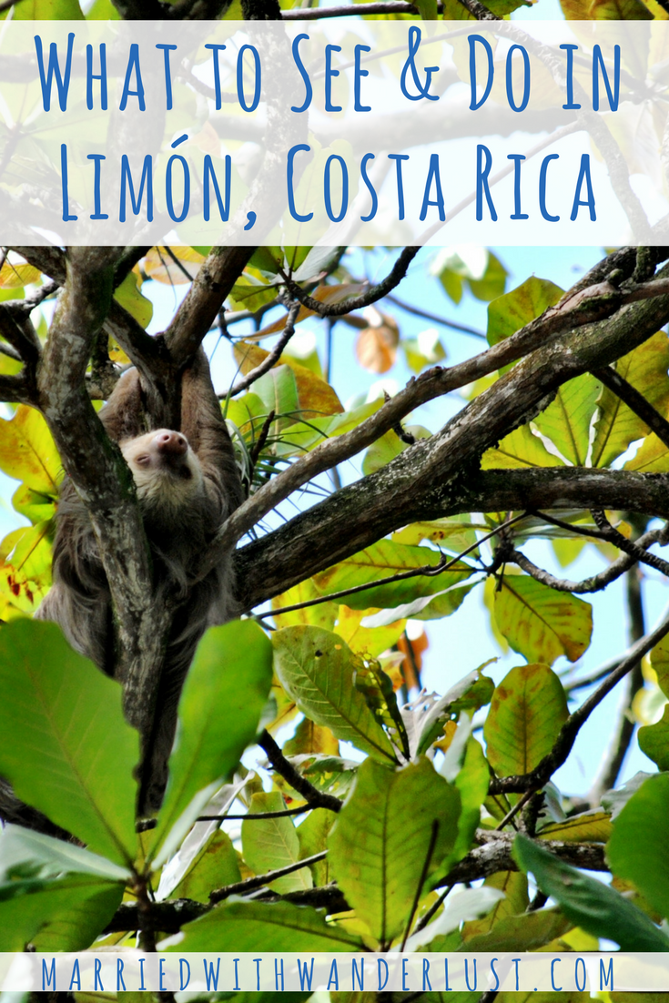 What to See & Do in Limón, Costa Rica