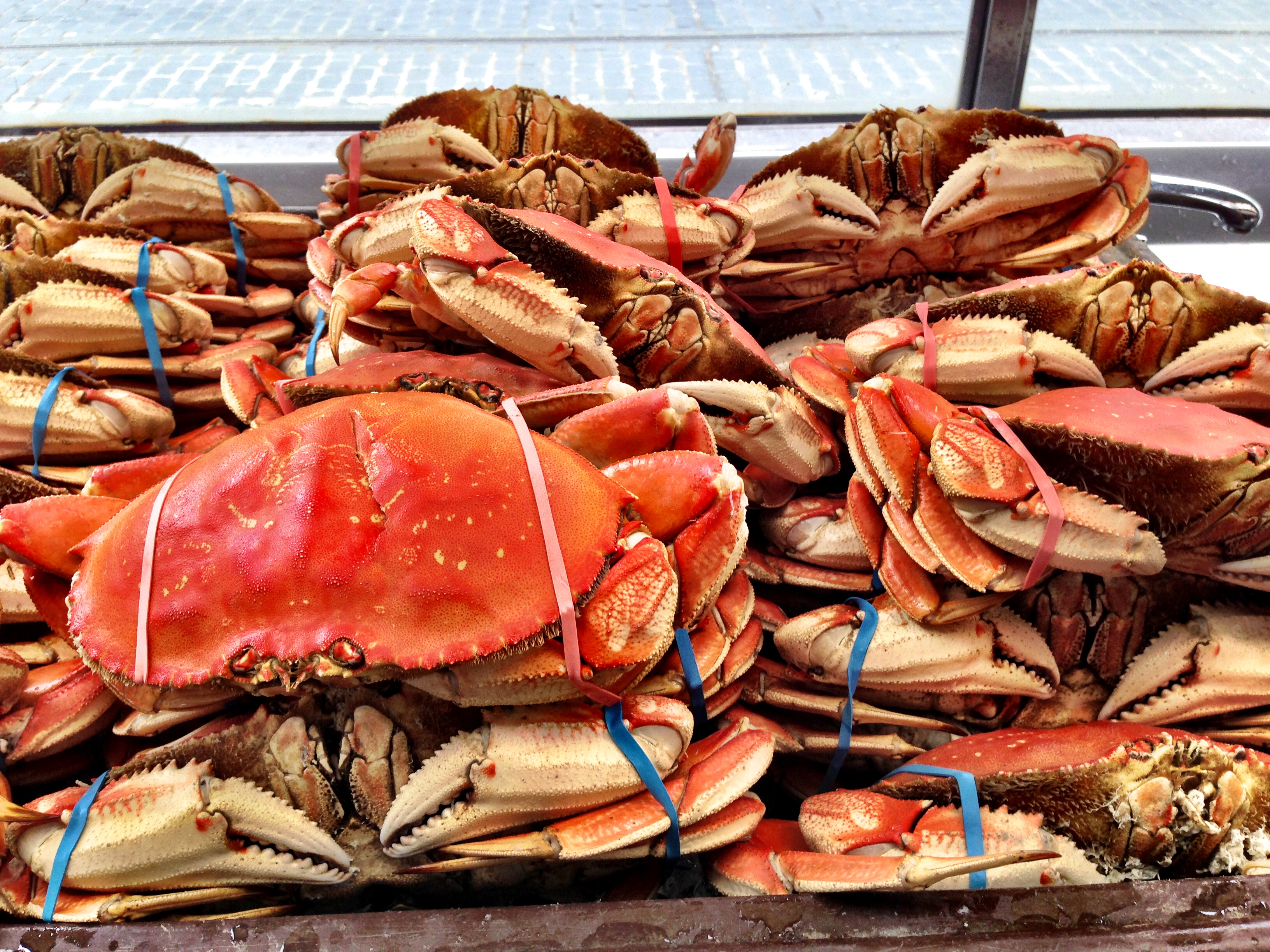 Try Dungeness Crab at Fisherman's Wharf in San Francisco
