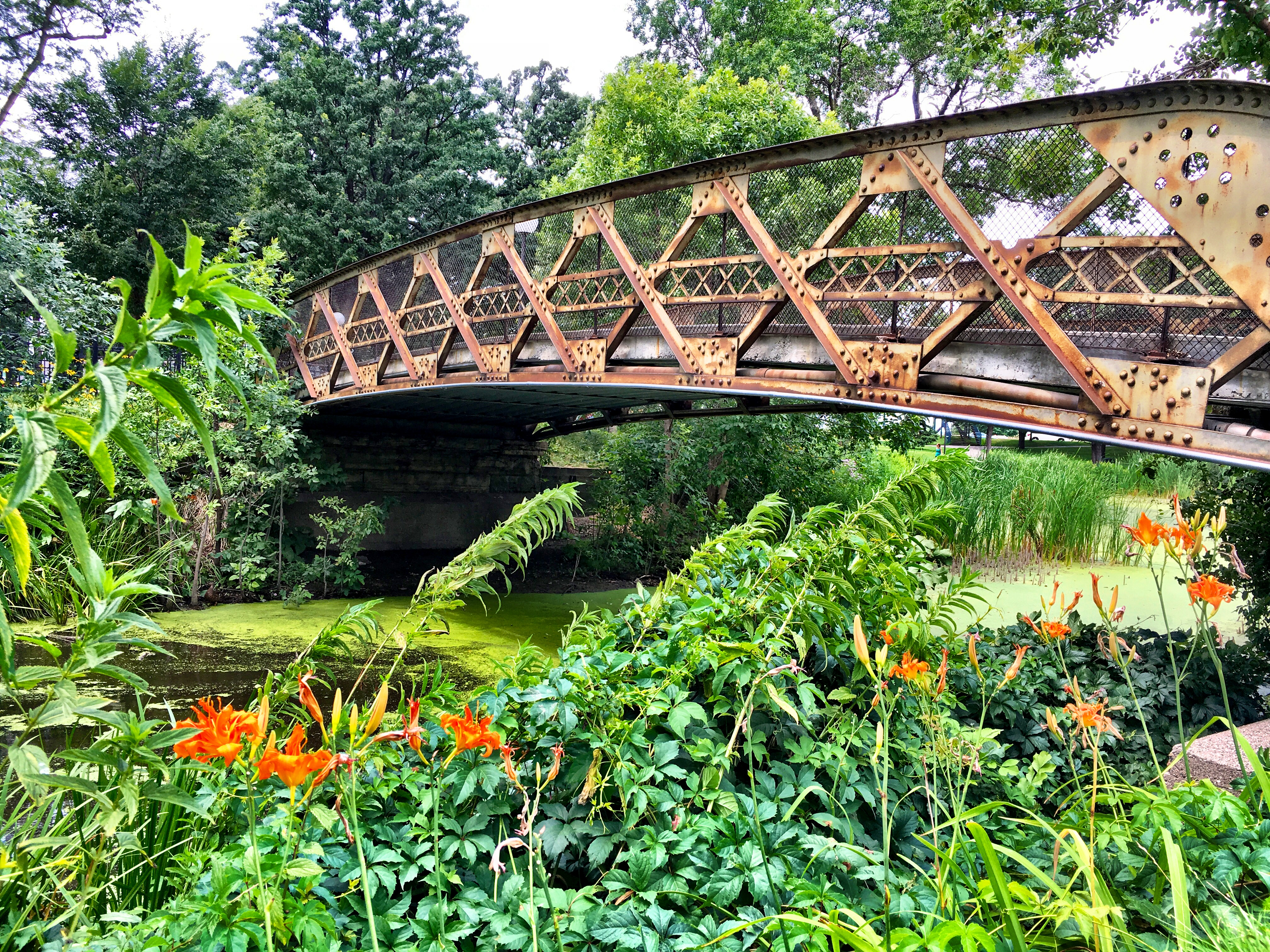 Short Bridge in Loring Park, Minneapolis
