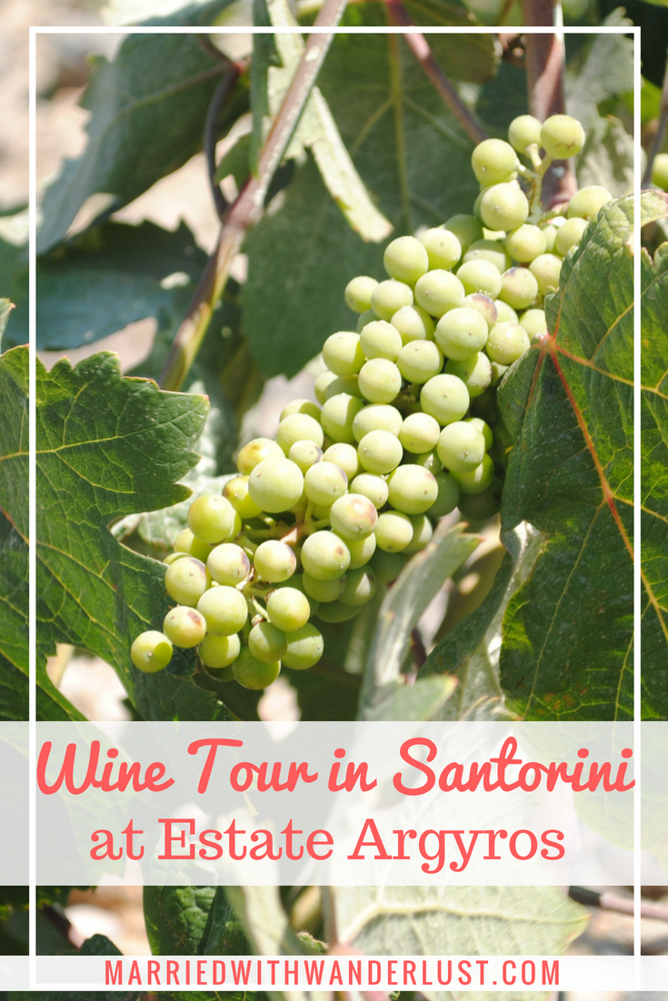 Wine Tour at Santorini's Estate Argyros