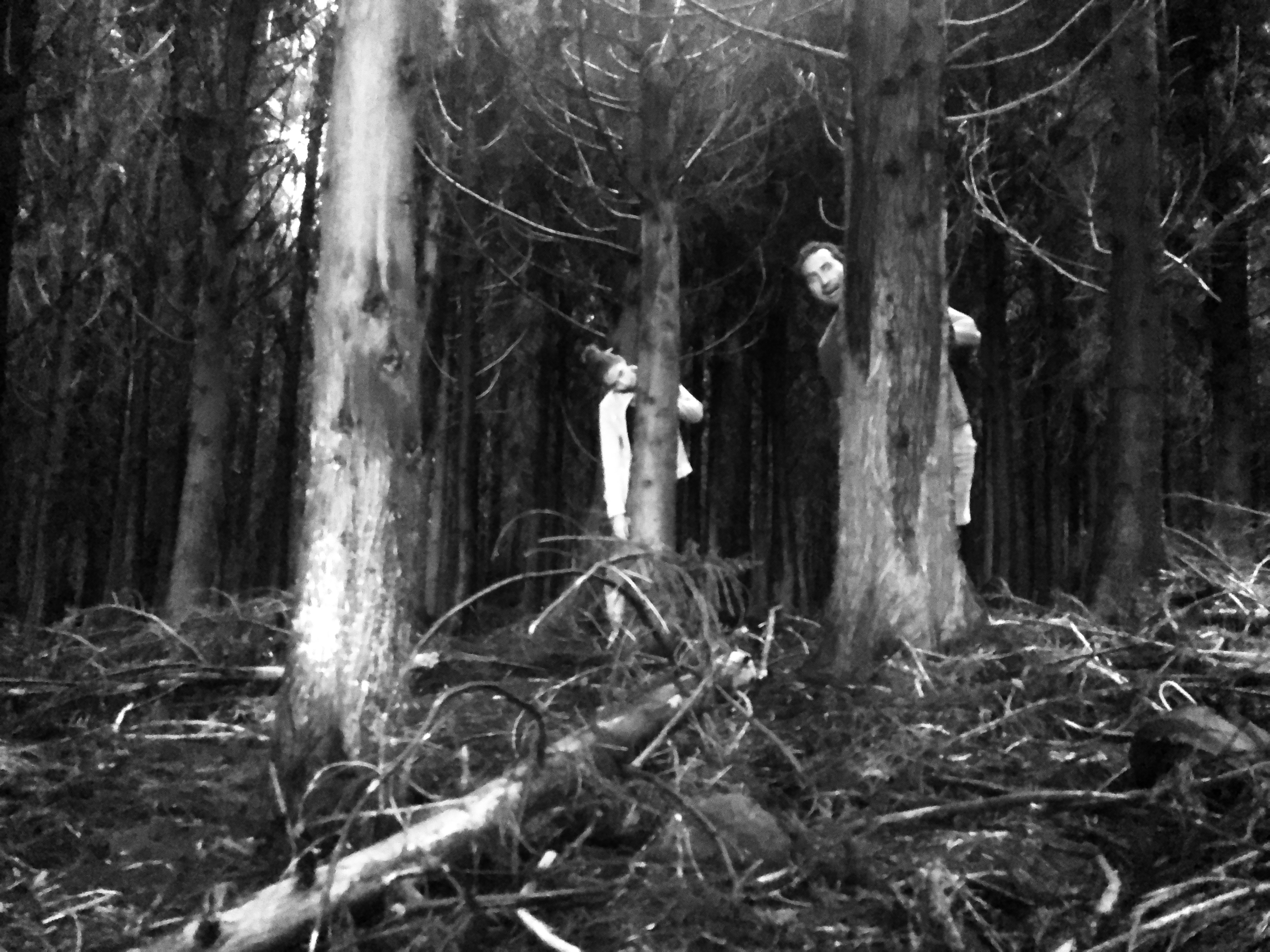 "Having fun in the ""Haunted Forest"" of Terceira Island, Azores"