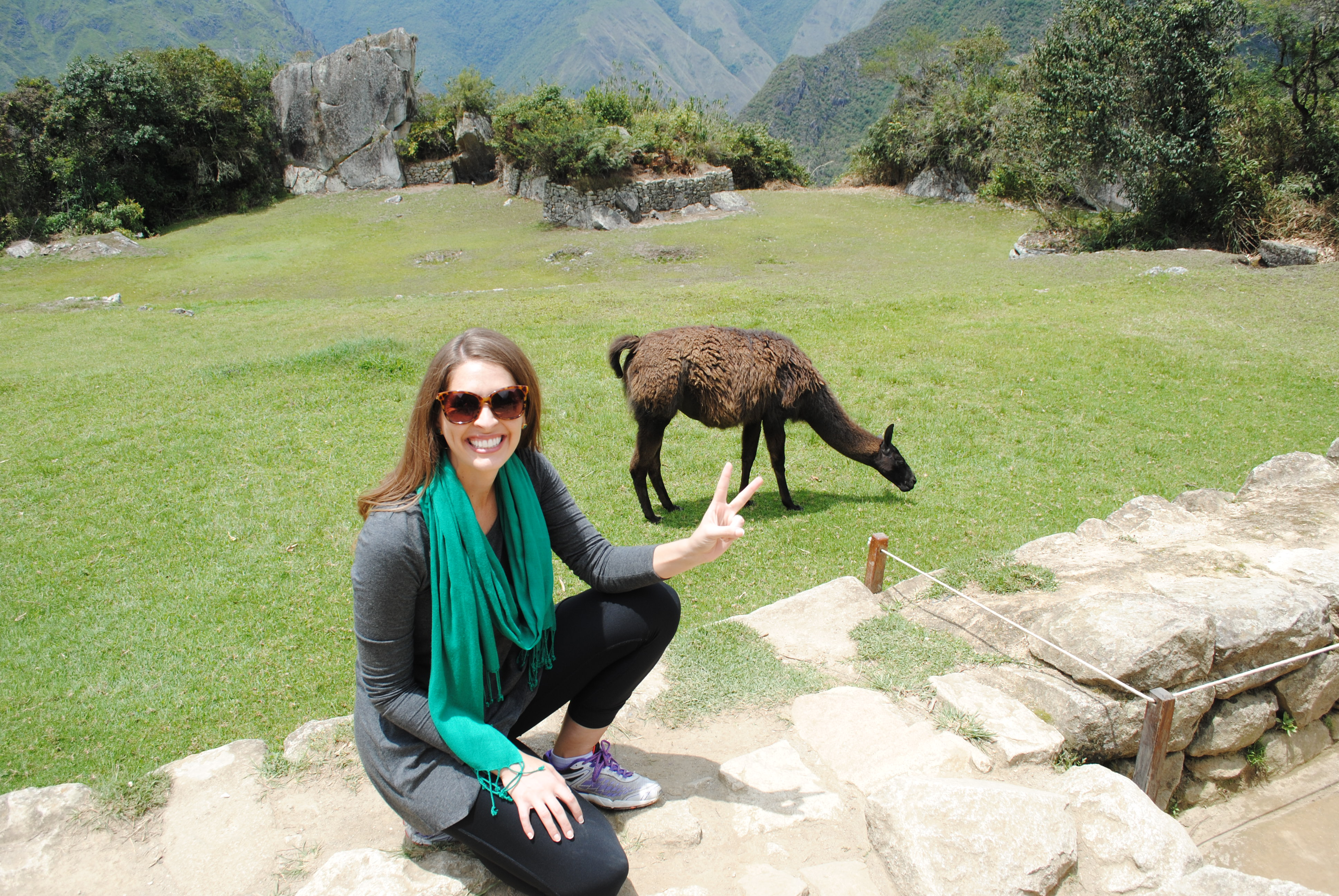 Hanging out with llamas at Machu Picchu