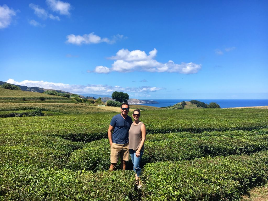 Exploring the tea fields in the Azores