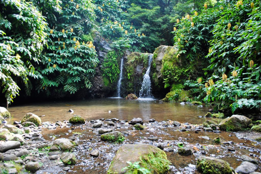 Waterfall at Parque Natural da Ribeira dos Caldeirões
