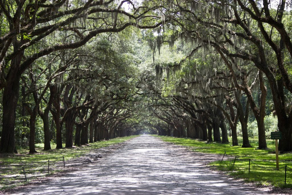 Southern Getaways: Savannah, GA