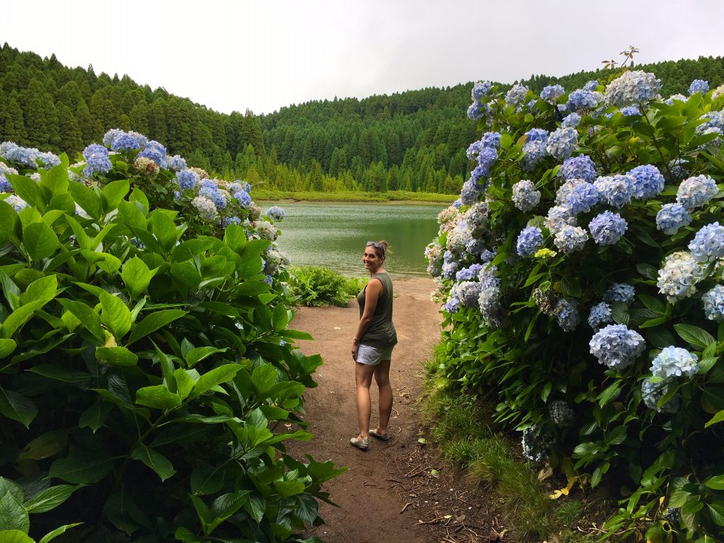 You'll feel like you're in hydrangea heaven in the Azores