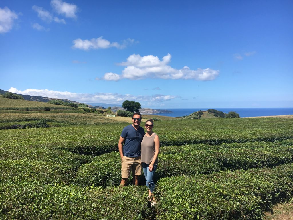 Explore the tea fields at Gorreana