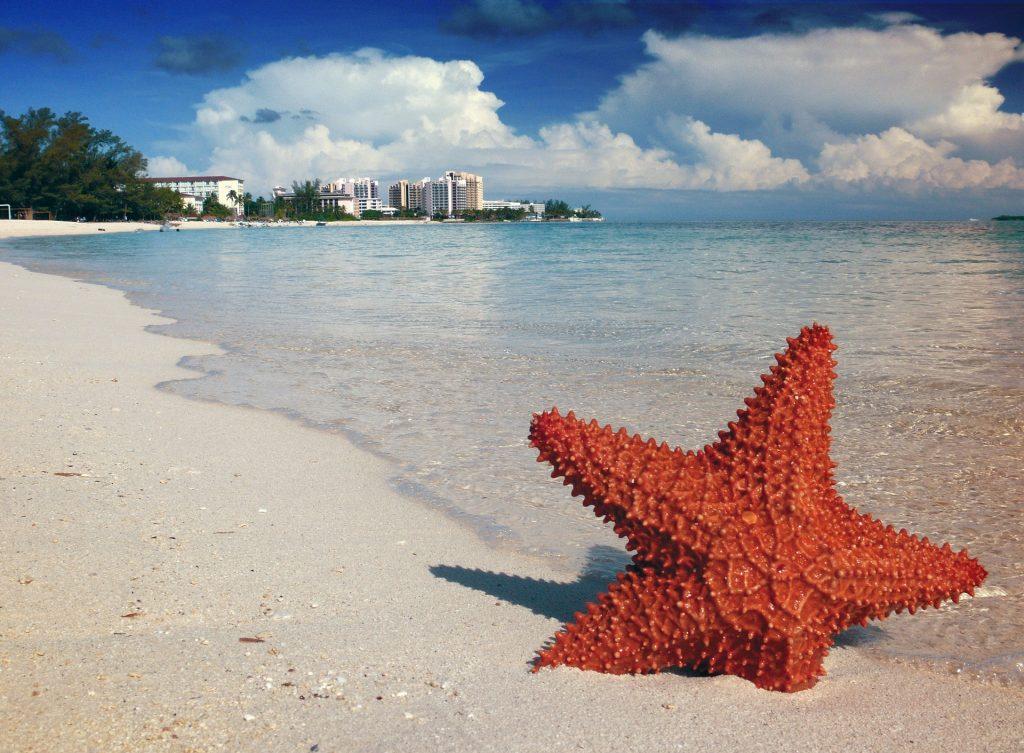 Hang on the Beach in Nassau, Bahamas