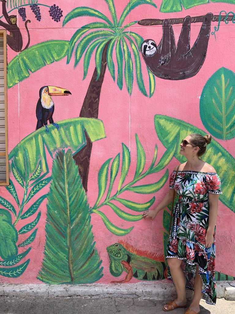 Jungle animals mural in Getsemani, Cartagena