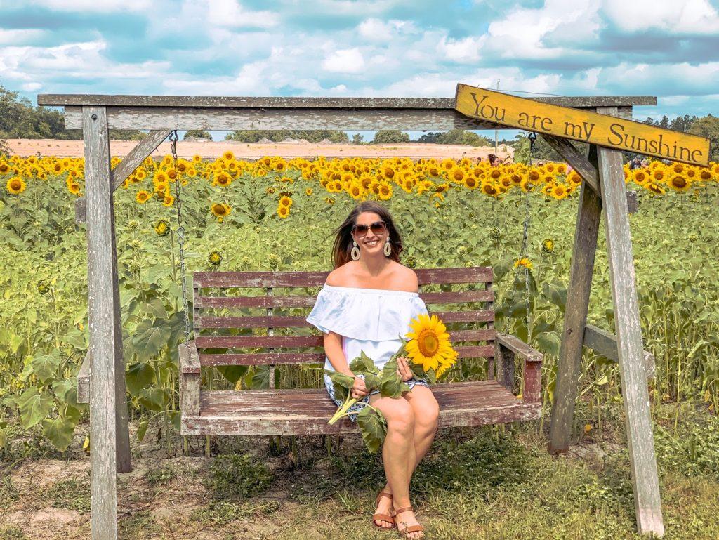 Picking sunflowers at Amazing Grace Family Farms near Jacksonville, Florida